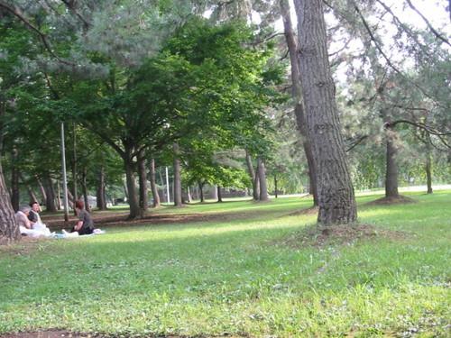 2006_140